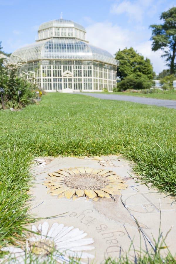 Estufa no jardim botânico nacional imagens de stock