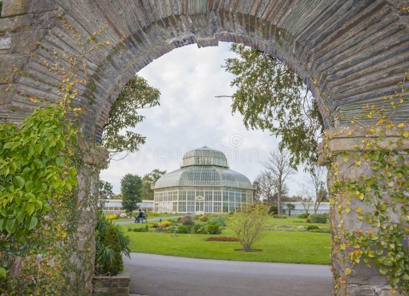 Estufa nos jardins botânicos nacionais fotografia de stock royalty free