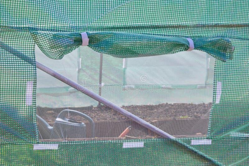 Estufa para o cultivo de plantas crescentes fotografia de stock