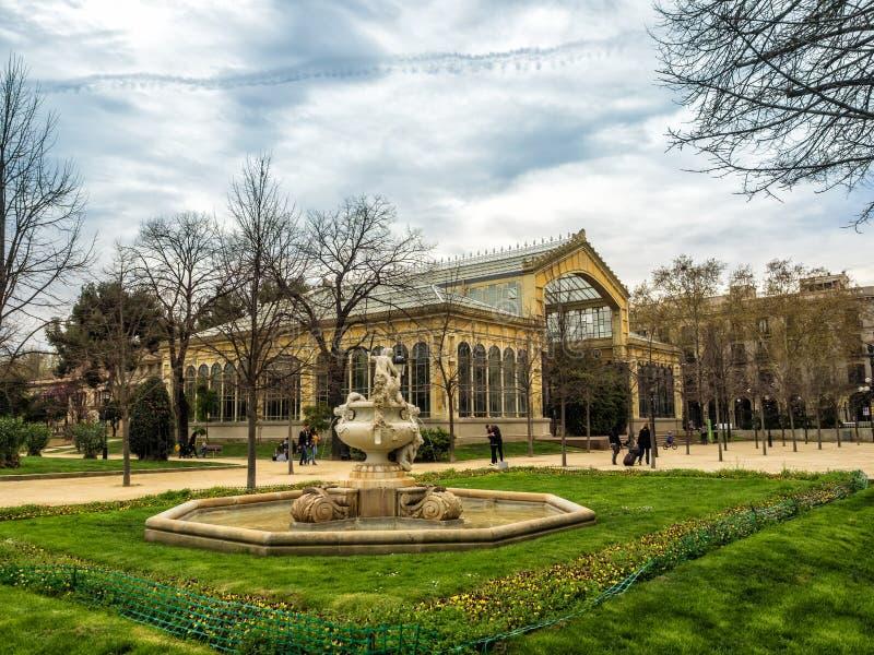 Estufa tropical no Parc de la Ciutadella, Barcelona foto de stock royalty free