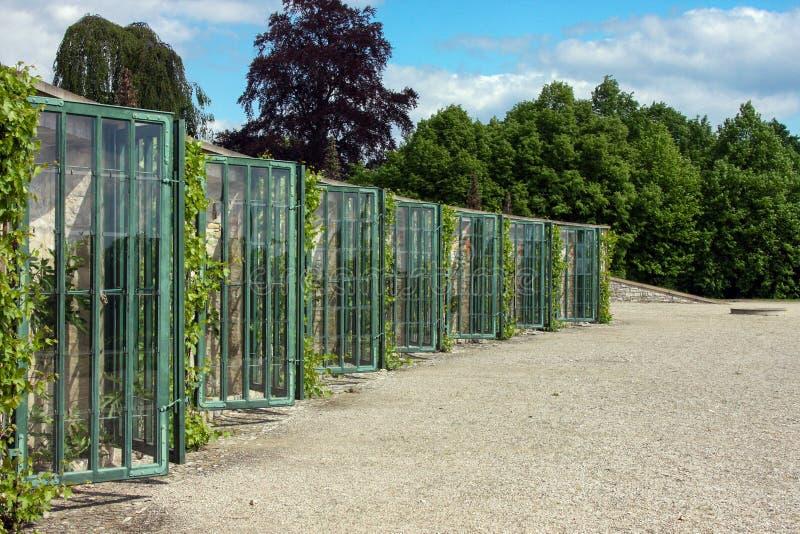 Estufas da uva em Potsdam, Alemanha fotografia de stock royalty free