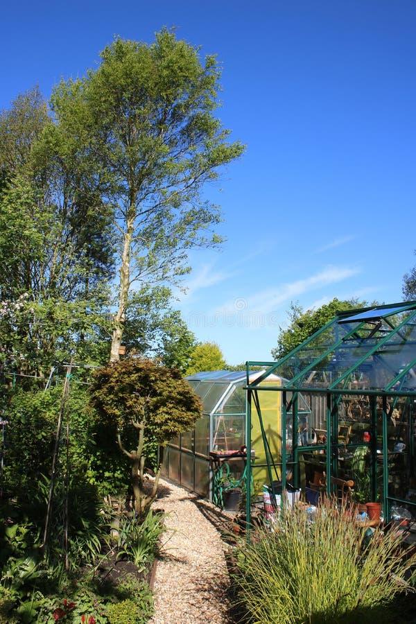 Estufas no grande jardim com plantas sortidos imagem de stock