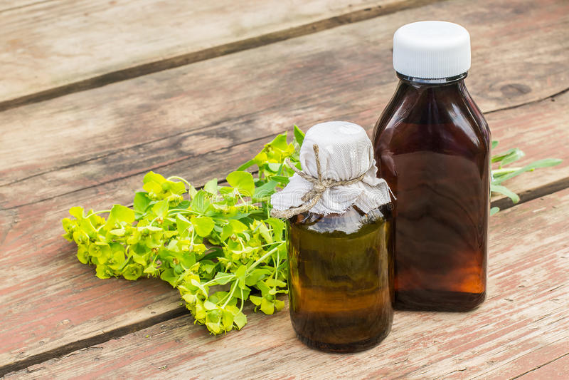 Esula del euforbio de la planta medicinal y botella farmacéutica imagenes de archivo