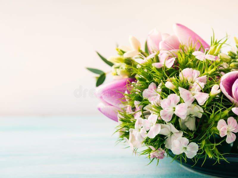 Esvazie cores pastel roxas da mola das rosas das tulipas das flores do cartão fotografia de stock royalty free