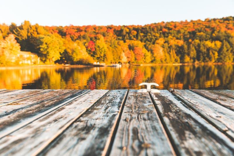 Esvazie a doca de madeira no lago com as árvores no fundo fotografia de stock