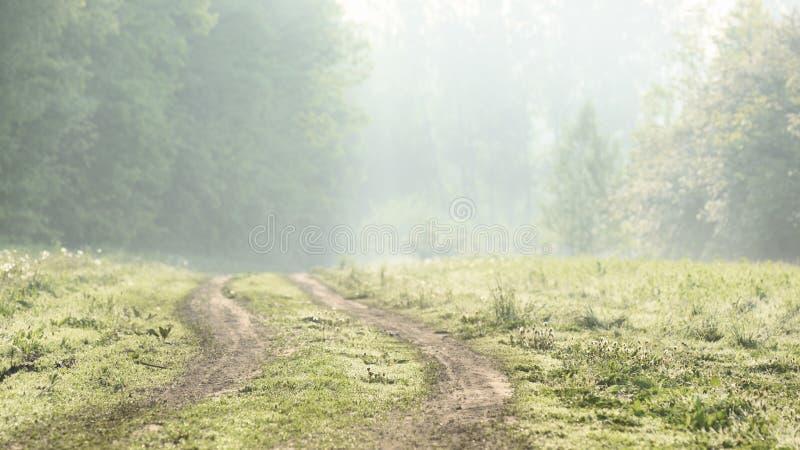 Esvazie a estrada secundária curvada na paisagem do embaçamento do amanhecer imagem de stock royalty free