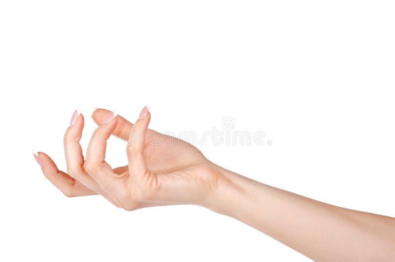 Esvazie a mão aberta da mulher no branco fotos de stock royalty free