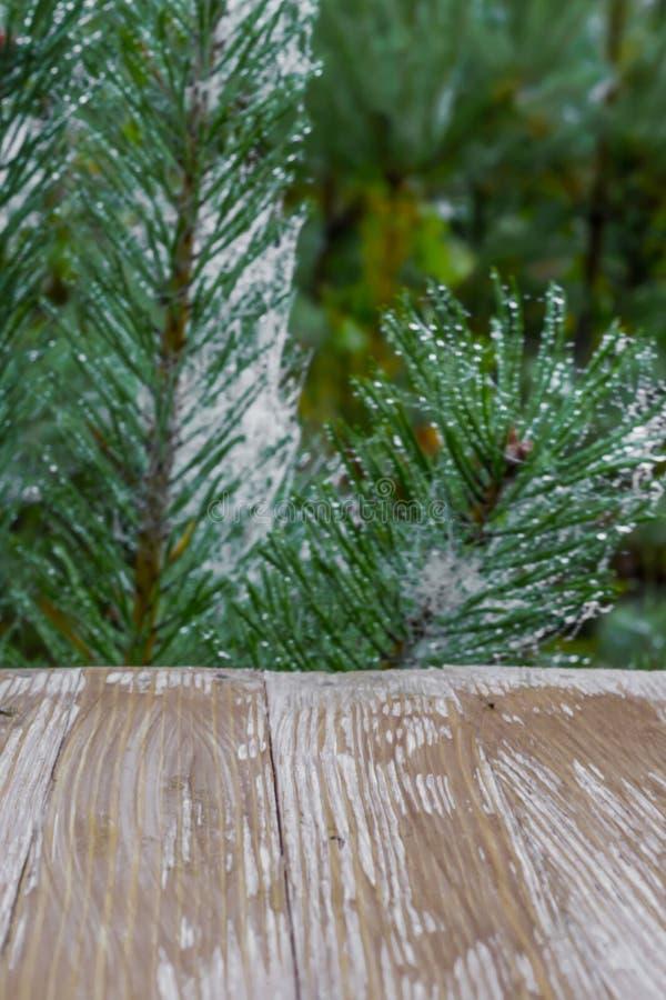 Esvazie o tampo da mesa de madeira rústico no backgroun dos ramos de árvore do Natal fotografia de stock royalty free