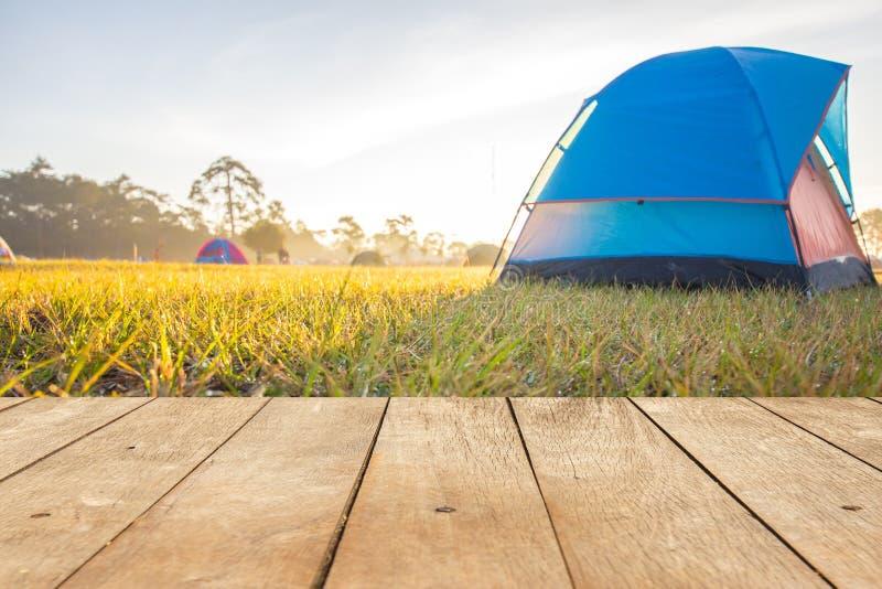 Esvazie a tabela ou a prancha de madeira com orvalho na grama verde e na barraca azul de acampamento na manhã no fundo imagens de stock