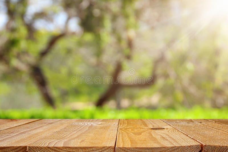 Esvazie a tabela rústica na frente do fundo verde do bokeh do sumário da mola exposição do produto e conceito do piquenique imagens de stock