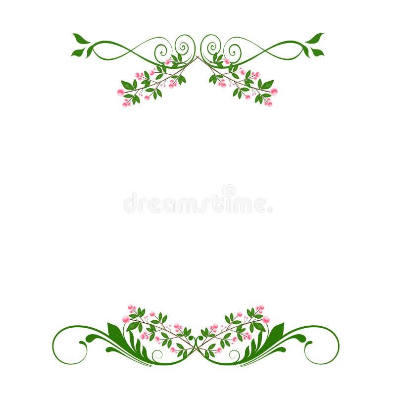 Esverdeie divisores florais cor-de-rosa dos redemoinhos ilustração royalty free