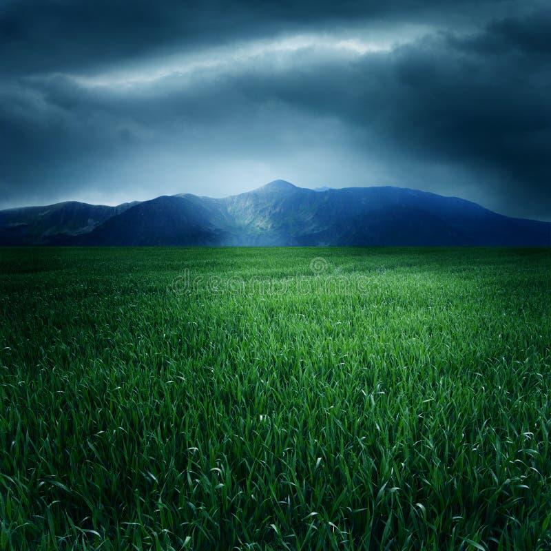 Esverdeie o campo e as montanhas imagens de stock royalty free