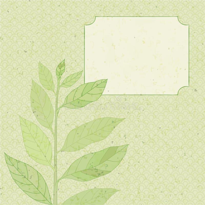 Download Esverdeie o galho ilustração do vetor. Ilustração de planta - 29831710