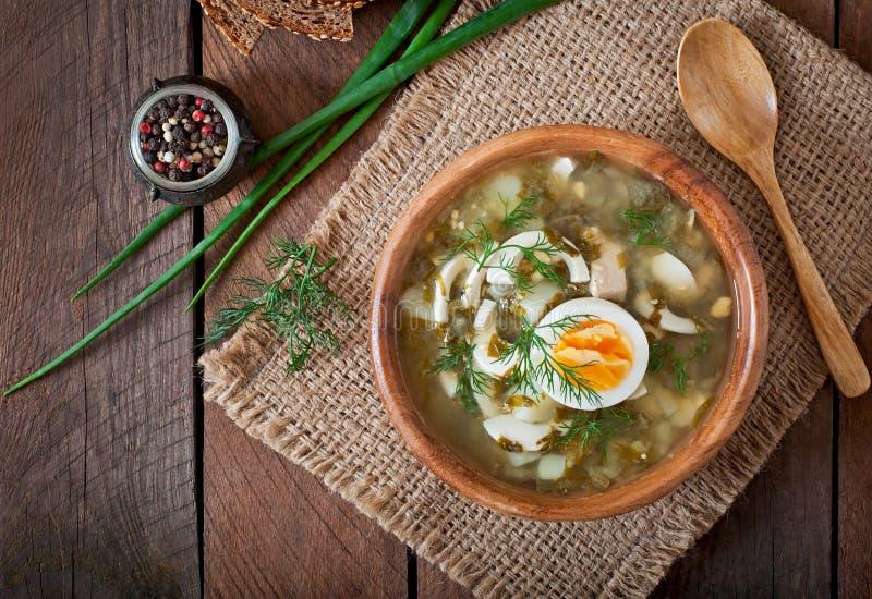 Esverdeie a sopa do sorrel fotografia de stock royalty free