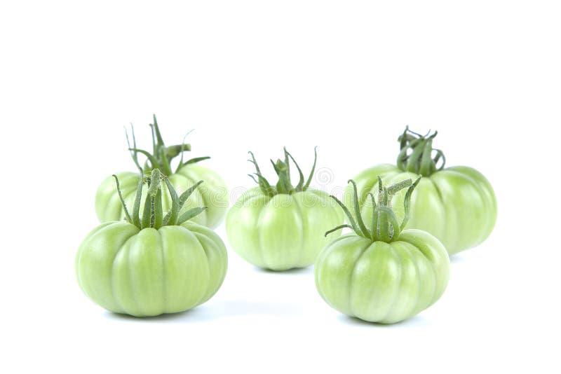 Esverdeie tomates foto de stock royalty free