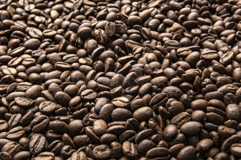 Φασόλια καφέ E στοκ φωτογραφία με δικαίωμα ελεύθερης χρήσης