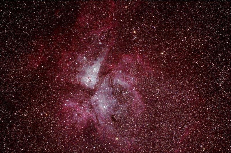 Eta Carinae Nebula - NGC 3772 arkivbilder