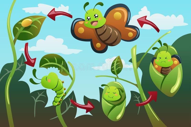 Etap życia motyl ilustracji