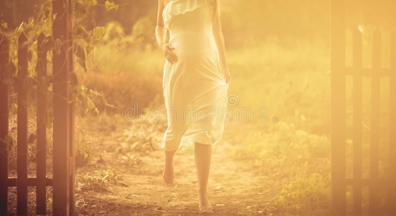 Etapas da maternidade fotografia de stock