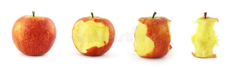 Etapas de comer la manzana fotos de archivo libres de regalías
