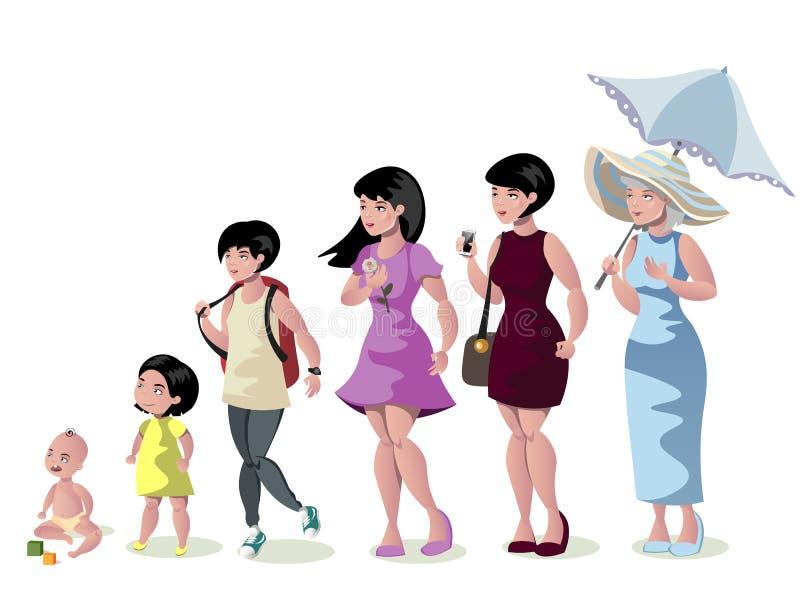 Etapas de la mujer del desarrollo en el fondo blanco libre illustration