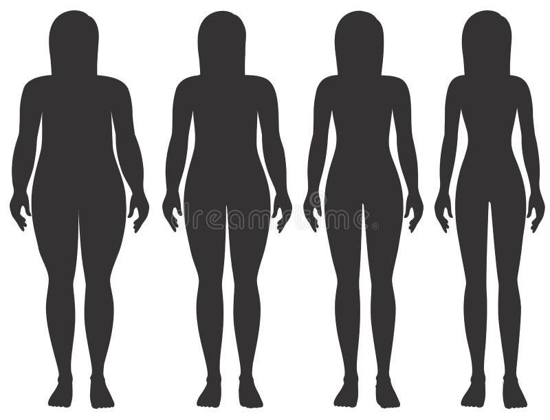 Etapas del peso de la mujer ilustración del vector
