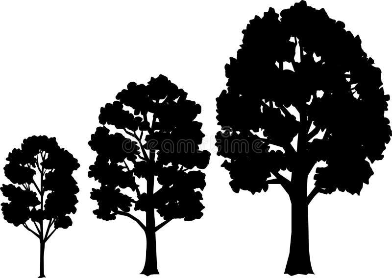 Etapas/EPS del crecimiento del árbol ilustración del vector