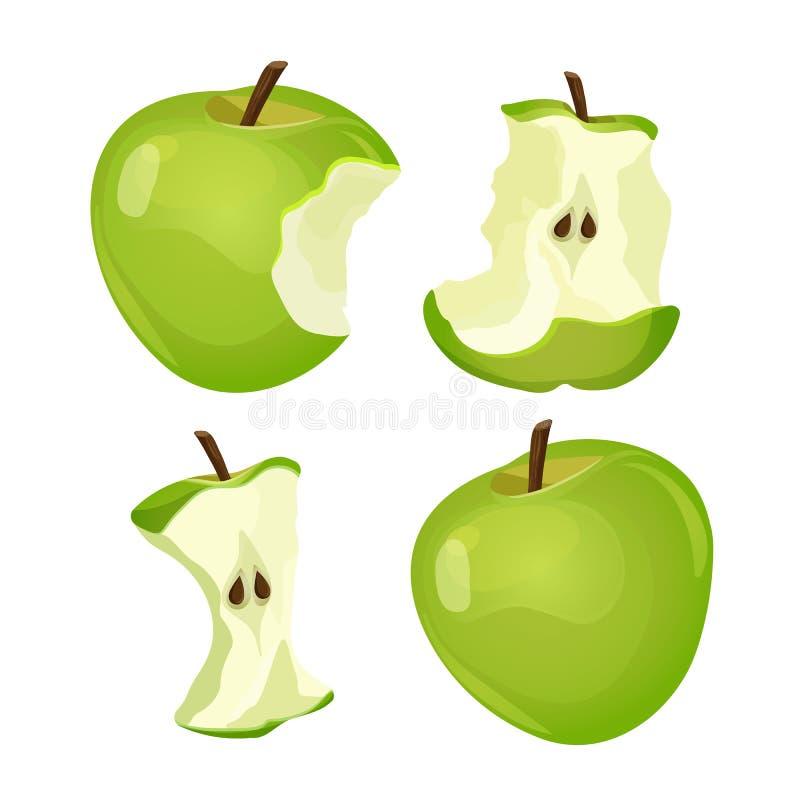 Etapper av det hela och bet äpplet som isoleras på vit bakgrund vektor illustrationer