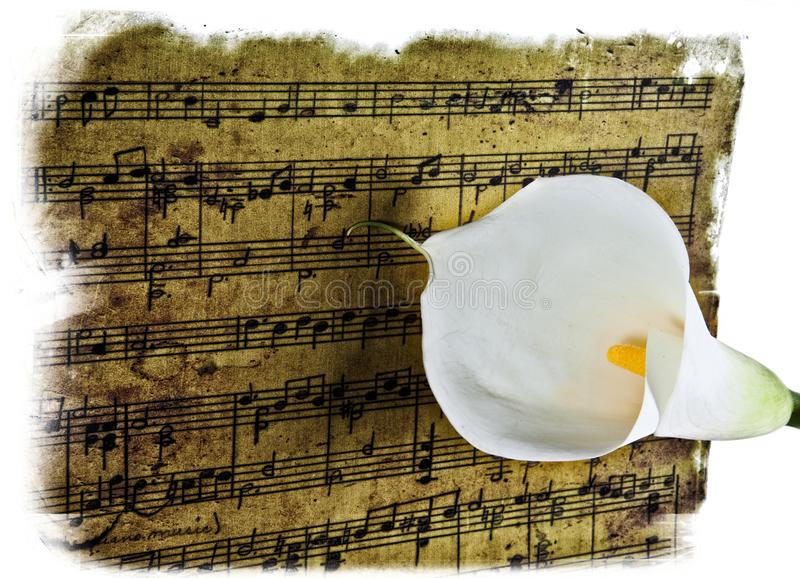 Eternal romantic music. Old sheet music isolated on white background with a glass of milk on top stock photos
