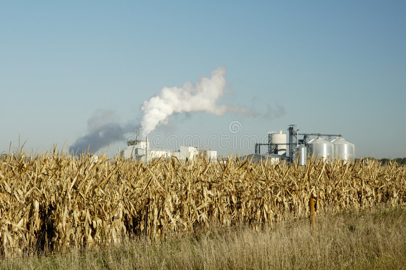 Download Ethanol 2 Royalty Free Stock Photography - Image: 1299727