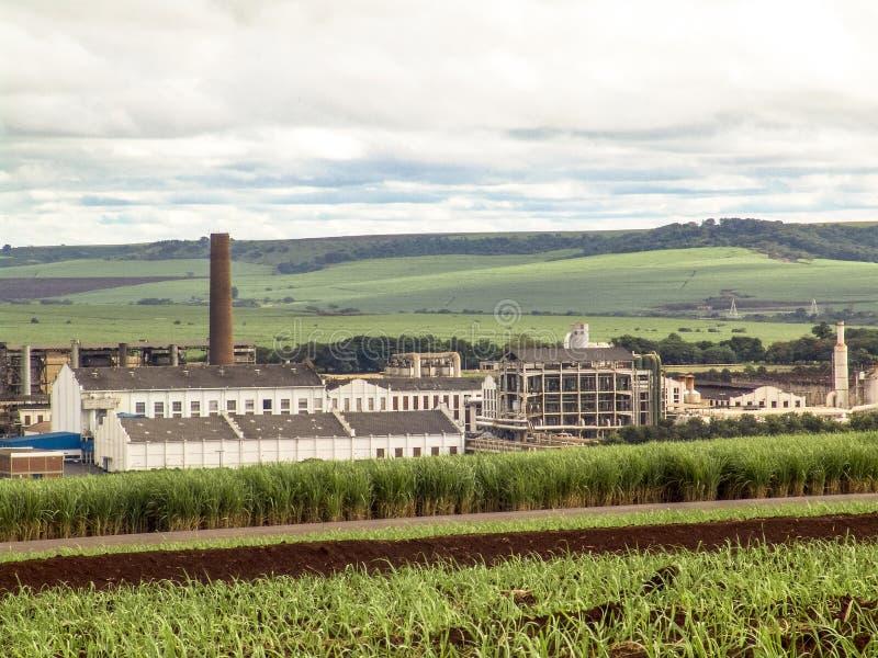 ethanol imagem de stock