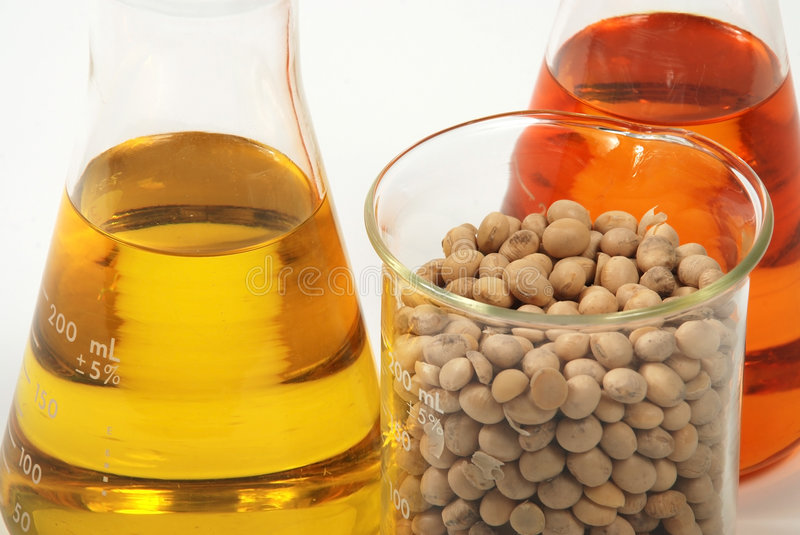 Download Ethanol Produce By Soy Seeds Stock Image - Image: 8024347