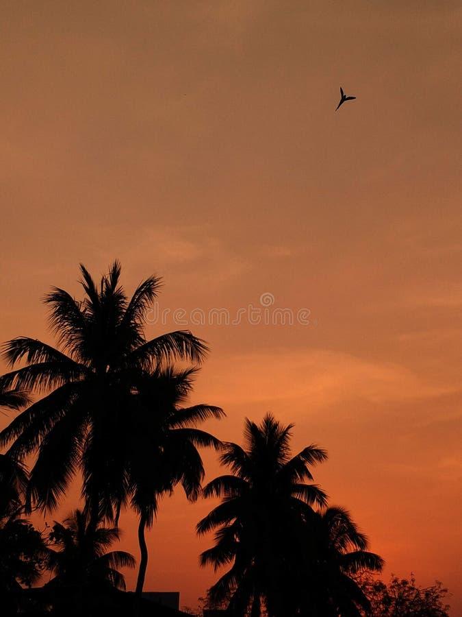 Ethereal ηλιοβασίλεμα στοκ φωτογραφία με δικαίωμα ελεύθερης χρήσης