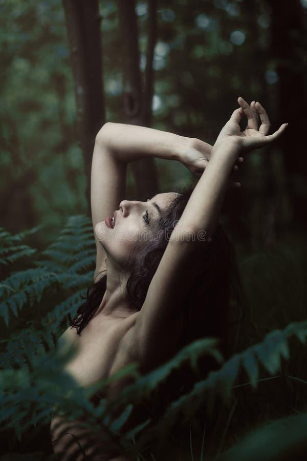 Ethereal κόρη του δάσους στοκ εικόνα