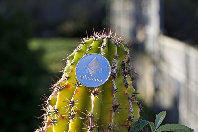 Ethereum monety kaktusa pojęcie zdjęcia stock
