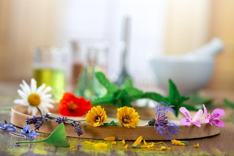 Etherische oli?n voor aromatherapy behandeling met verse kruiden op mortier witte achtergrond Schoonheid, balsem royalty-vrije stock afbeeldingen