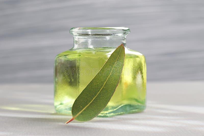 Etherische olie van eucalyptus stock foto's