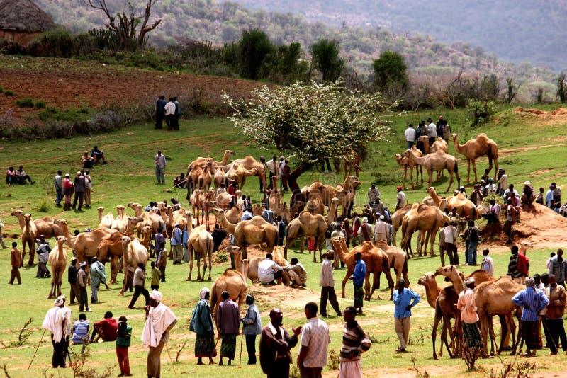 ethiopia obraz stock