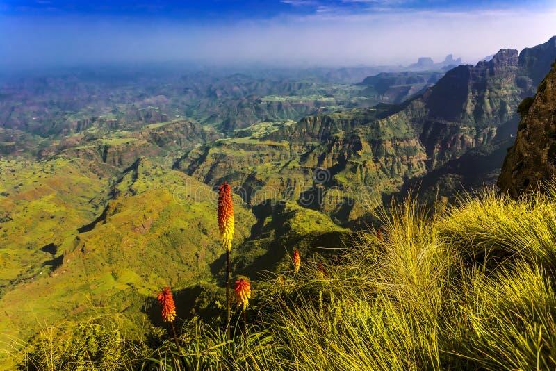 ethiopia berg simien arkivbild