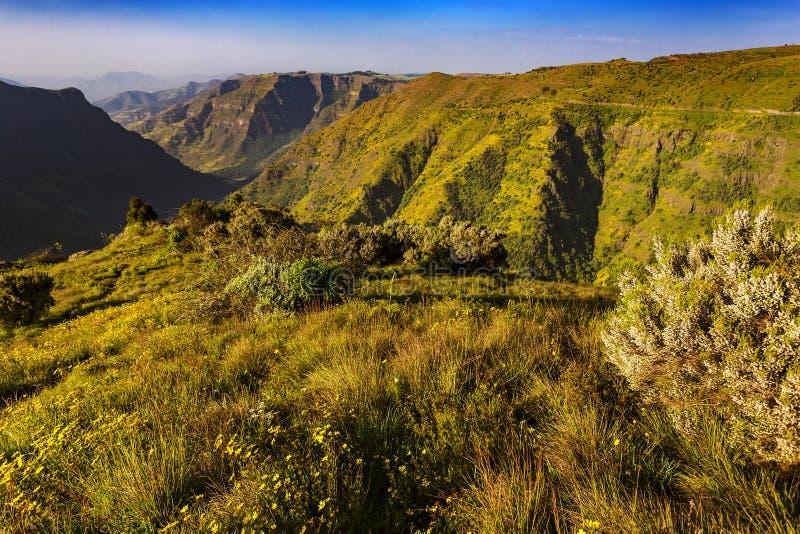 ethiopia berg simien royaltyfria bilder