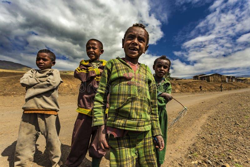 ethiopia berg simien royaltyfria foton