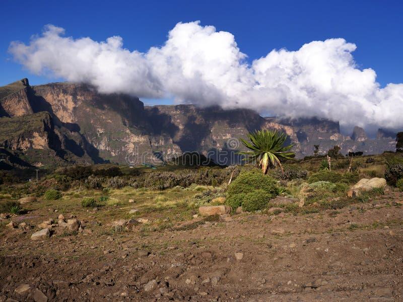 ethiopia góry simien obrazy stock