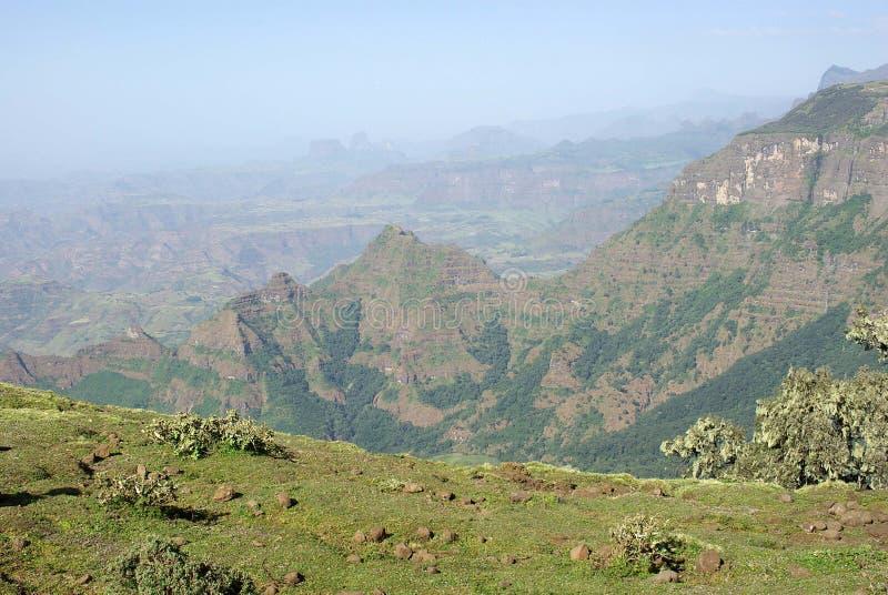 ethiopia liggande royaltyfria foton