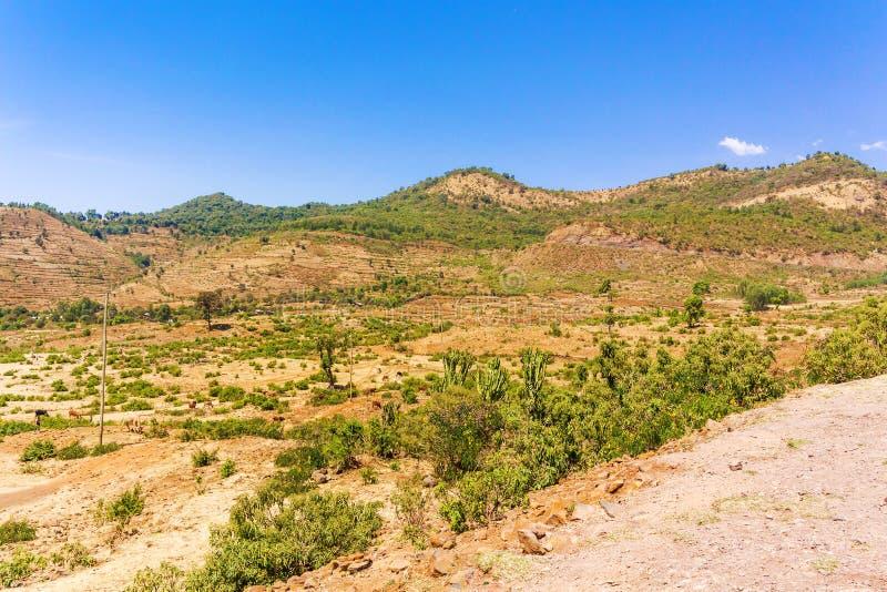 ethiopia liggande arkivfoto