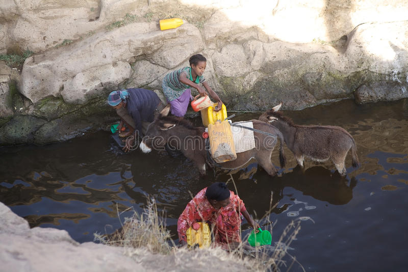 Ethiopian women and water supply. Ethiopian women with donkeys is taking the water at the river in the ethiopian rural area. The access to the water is a big stock photo