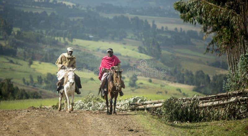 Ethiopische ruiters stock afbeeldingen