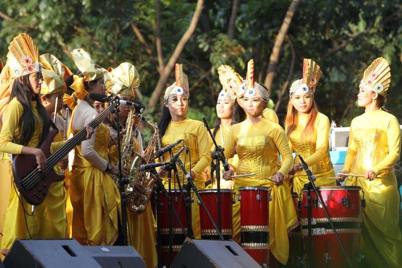 Ethnische Musik stockbilder