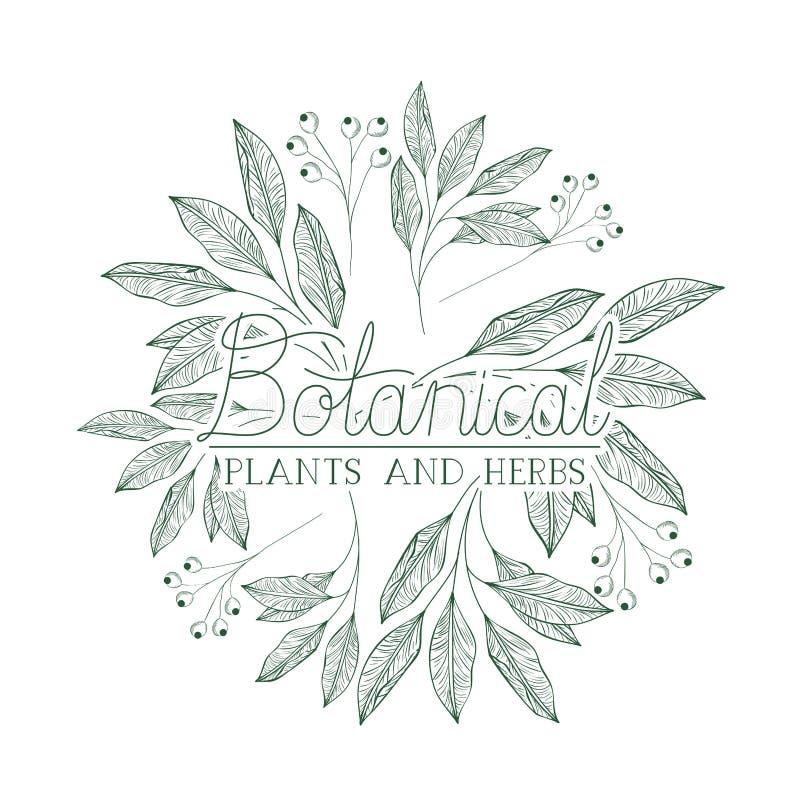 Etichetta botanica con le piante e le erbe royalty illustrazione gratis