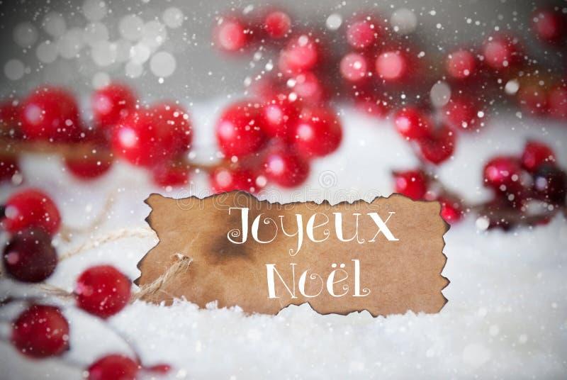 Etichetta bruciata, neve, fiocchi di neve, Joyeux Noel Means Merry Christmas immagine stock libera da diritti