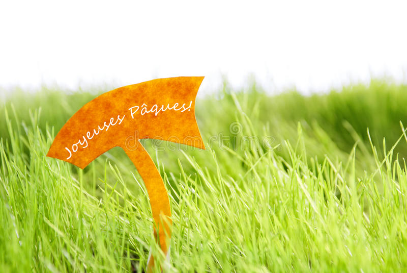 Etichetta con il francese Joyeuses Paques che significa Pasqua felice su erba verde fotografie stock libere da diritti